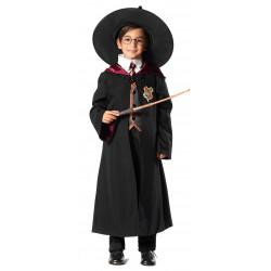 Disfraz Mago o Hechicero para Niño